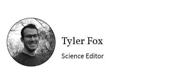 Tylor Fox_byline box